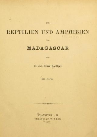 Die Reptilien und Amphibien von Madagascar